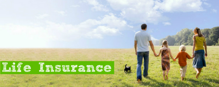 life.insurance.suburban.agency.youngstown