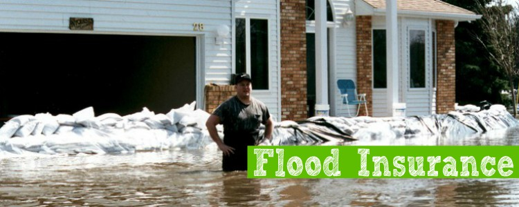 lowcostflood insurance.northeast .ohio